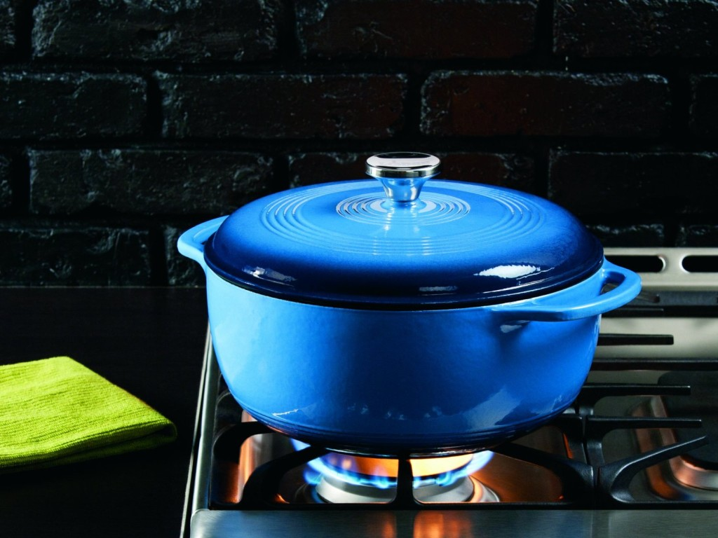 lodge color enameled cast iron dutch oven